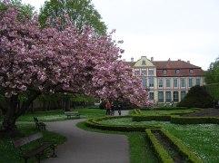 Park Oliwski Autor zdjęcia: Andrzej Otrębski - Praca własna, CC BY-SA 3.0, https://commons.wikimedia.org/w/index.php?curid=23752025